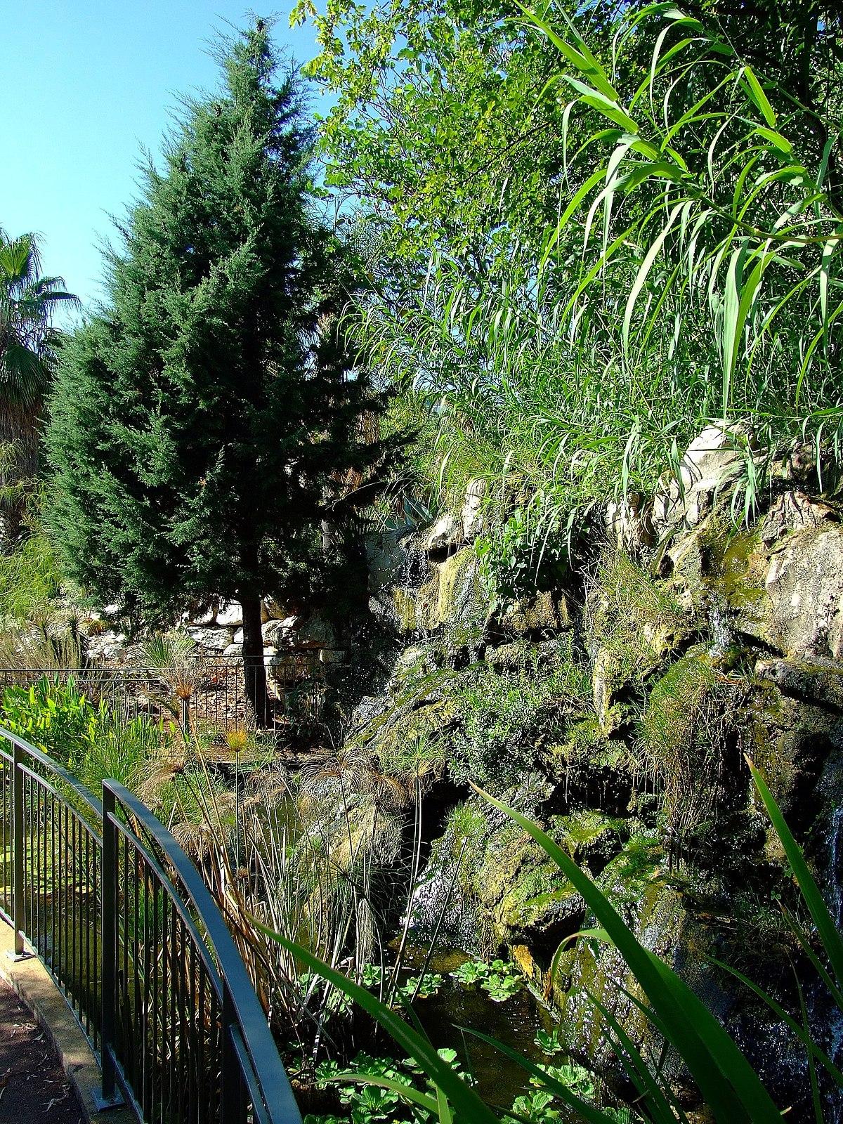 Jardin botanique de la ville de nice wikidata for Jardin botanique