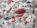 Jasper-quartz pebble conglomerate (Lorrain Formation, Paleoproterozoic, ~2.3 Ga; Ottertail Lake Northeast roadcut, near Bruce Mines, Ontario, Canada) 12 (47709248611).jpg