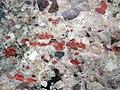 Jasper-quartz pebble conglomerate (Lorrain Formation, Paleoproterozoic, ~2.3 Ga; Ottertail Lake Northeast roadcut, near Bruce Mines, Ontario, Canada) 27 (32766002597).jpg