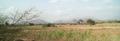 Jazan - al-harth1.png