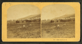 Jefferson Hill, N.H, from Robert N. Dennis collection of stereoscopic views 2.png