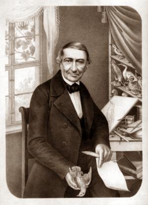 Johann Friedrich Naumann - Prof. Dr. Johann Friedrich Naumann