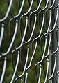 Jyväskylä - fence.jpg