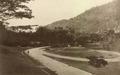 KITLV - 80037 - Kleingrothe, C.J. - Medan - Botanical Gardens in Penang - circa 1910.tif