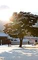 KOCIS Korea Snowfall in Gyeongbokgung 16 (11318886254).jpg