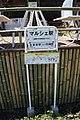 Kasugai 20210426-150.jpg