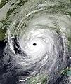 Katrina 2005-08-29 0400Z.jpg