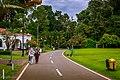 Kebun Raya Bogor 05.jpg