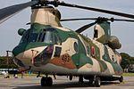 Ken H. 'Crest 483' - CH-47J (5053780173).jpg
