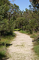 Kings park gnangarra 250815-112.jpg