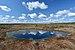 Koitjärve raba 05-2015.jpg