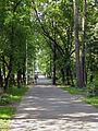 Kovrov. Alley of Park named Degtyaryov.jpg