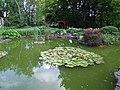 Kraków, ogród botaniczny Uniwersytetu Jagiellońskiego - Cracow, the botanical garden of the Jagiellonian University - panoramio (3).jpg