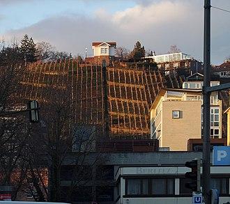 Trollinger - Trollinger vineyard in the city center of Stuttgart