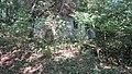 Kroz šumu niz potok - panoramio.jpg