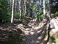 Kumano Kodo Dainichigoe World heritage46.JPG