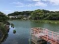 Kumanokoshiike Pond 20170712-1.jpg