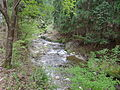 Kuta river 3.JPG