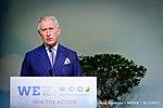 LPAA - Forest Focus Day - Participation du Prince Charles de l'Angleterre, le Roi de Suède, Manuel Pulgar-Vidal, Izabella Teixeira (23443532035).jpg