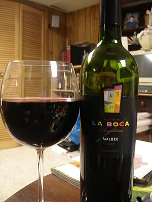 Bottle and glass of Malbec wine from Mendoza A...