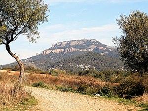 La Mola des del pla del Vallès.jpg