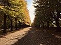 La Passeggiata in autunno, Terni.jpg