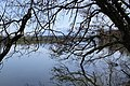 Lac de Bret - panoramio (96).jpg