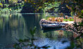 Lake-shrine-crop-internet-01.jpg