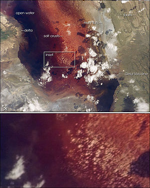 "Lake Natron - The southern half of Lake Natron (top). Fault scarps and the Gelai Volcano can also be seen. Numerous near-white salt-crust ""rafts"" pepper the shallowest parts of the lake (inset)."