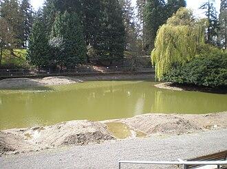 Laurelhurst Park - Firwood Lake restoration (April 2011)