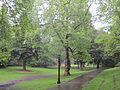 Laurelhust Park rain, Portland, May 21, 2012.JPG