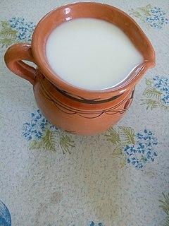 Leben (milk product) Food or beverage of fermented milk