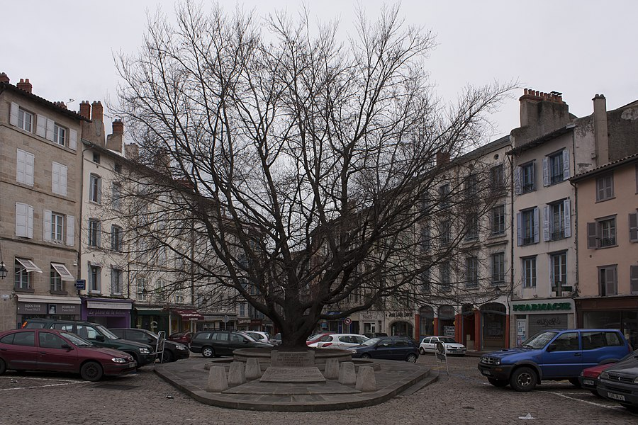English:  Liberty tree planted to mark the end of the First World War.