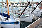 Le sloop de pêche AMPHITRITE (3).JPG