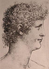 Leonardo Salai.JPG