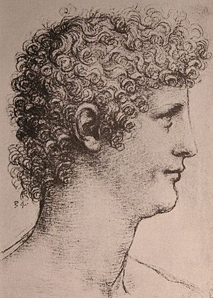 Salaì - Drawing thought to be Salaì by Leonardo da Vinci