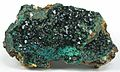 Libethenite-tuc1033a.jpg