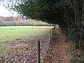 Littleworth Common, Shakespeare's Way - geograph.org.uk - 1047433.jpg