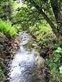 Loach Brook - geograph.org.uk - 508496.jpg