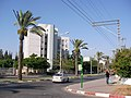 Lod Israel - panoramio - yfrimer (12).jpg