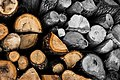 Logs at Fruška Gora, Serbia.jpg