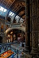 London - Cromwell Road - Natural History Museum 1881 by Alfred Waterhouse - View into the Central Hall.jpg