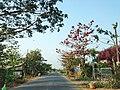 Long Bình Điền, tp. Mỹ Tho, Tiền Giang, Vietnam - panoramio (1).jpg