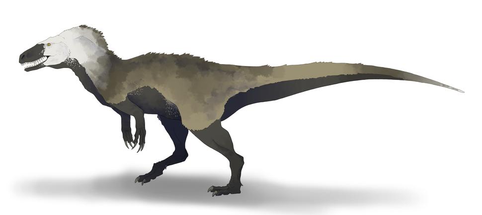 Lourinhanosaurus antunesi reconstruction