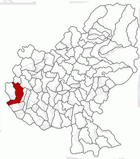 Luduș Town in Mureș, Romania