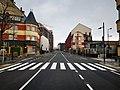 Luxembourg, Rue de Hollerich (101).jpg