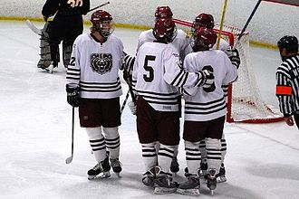 Missouri State Bears and Lady Bears - Missouri State ice hockey players celebrate a goal against University of Missouri.