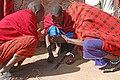 Maasai 2012 05 31 2795 (7522643774).jpg