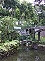 Madeira - Monte - Jardim Tropico (2093406290).jpg