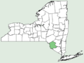 Magnolia fraseri NY-dist-map.png